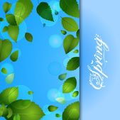 Spring background with leafs and text — Stock Photo