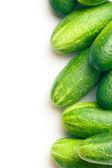 Groene komkommers — Stockfoto