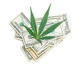 Cannabis leaf and money — Stock Photo