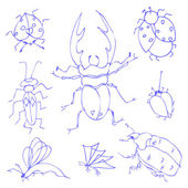 Insects sketch decorative icons set with dragonfly fly butterfly — Stock Vector