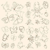 Set of butterflies and bugs. Insects. Vector illustration. — Stock vektor