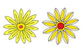 Set of Flower isolated. Vector illustration — Vecteur