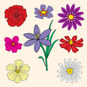Doodles Flowers collection. Vector illustration, Isolated — Cтоковый вектор
