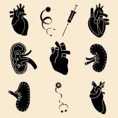 Concetto di illustrazione delle icone set piatto umano organi. — Vettoriale Stock