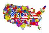 Mapa Stany Zjednoczone kwiatów — Wektor stockowy