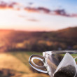 Morning cup of tea with view — Stock Photo #53291559