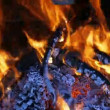 Firewood Burning in  Fireplace — Stock Video #65324463