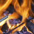 Firewood Burning in  Fireplace — Stock Video #65324547