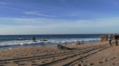 Casal correndo na praia — Vídeo stock