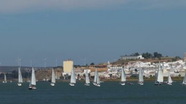Sailing Yachts in bay — Stock Video