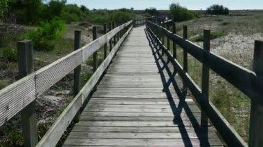 Walking on Wooden Walkway — Stok video