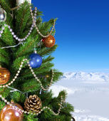 Green New Year tree — Stock Photo