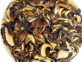 Soaked Dried Mushrooms — Stock Photo