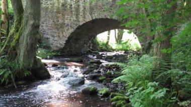 Stream flowing under the old stone bridge — Stock Video