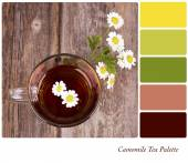 Camomile tea palette — Stock Photo