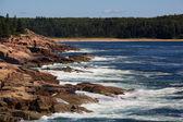 Rugged coastline, Acadia National Park. — Stock Photo