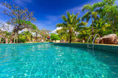 Tropical holidays at the swimming pool — Foto Stock