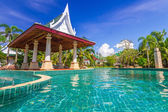 Tropical holidays at the swimming pool — Stockfoto