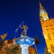 Fountain of the Neptune in old town of Gdansk — Stock Photo #53736911