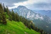 Mountain trail in Bavarian Alps — Stock Photo