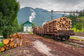 Train with wood transport in Austria — Stock fotografie