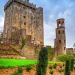 Medieval Blarney Castle in Ireland — Stock Photo #56253439