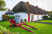 Cottage houses in Adare village, Ireland — Stock Photo
