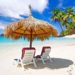 Постер, плакат: Tropical beach scenery from sun holidays