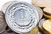 波兰兹罗提硬币 — 图库照片