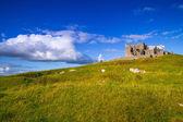 The Rock of Cashel in Ireland — Stock Photo