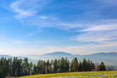Idyllic meadow in Tatra mountains — Stock Photo