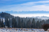 Panorama of Tatra mountains at winter time — Foto Stock