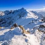 Tatra mountains in snowy winter time, Poland — Stock Photo #60327873