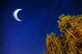 Night sky with shiny stars and moon — Stock Photo