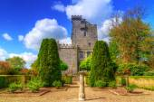 Knappogue Castle in Co. Clare — Stock Photo