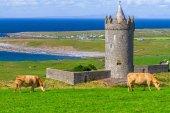 Doonagore castle in Ireland — Stock Photo