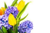Bunch of tulips and hyacinths — Stock Photo