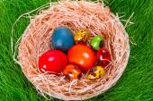 Colorful painted easter eggs in the nest — Foto Stock