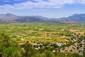 Agriculture and farming Lasithi plateau on Crete — Stockfoto