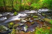 Creek of Clare Glens in Ireland — Stock Photo