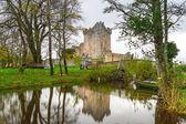 Ross Castle in Ireland — Stock Photo
