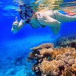 Snorkeling in the tropical water — Stock Photo #65322625