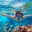 Snorkeling in the tropical water — Stock Photo #65322667
