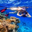 Snorkeling in the tropical water with camera — Stock Photo #65322937
