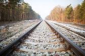 Train rails in Poland — Stock Photo