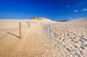 Rörliga sanddyner park nära Östersjön i Polen — Stockfoto