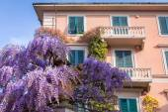 Pisa şehrinin İtalyan mimarisi — Stok fotoğraf
