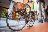 Old fashion bicycle on the street of Pisa — Stock Photo