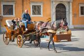 Horse carriage ride on the streets of Pisa old town — Stock Photo