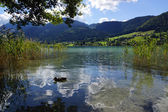 Weissensee — Stock Photo